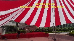 Cho thuê dù  tại Trần Duy Hưng